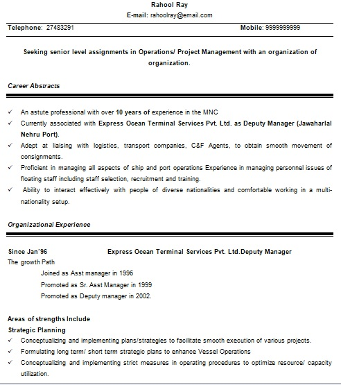 senior project manager resume format in word