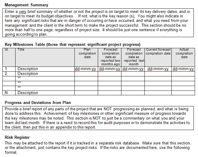 monthly management report template excel