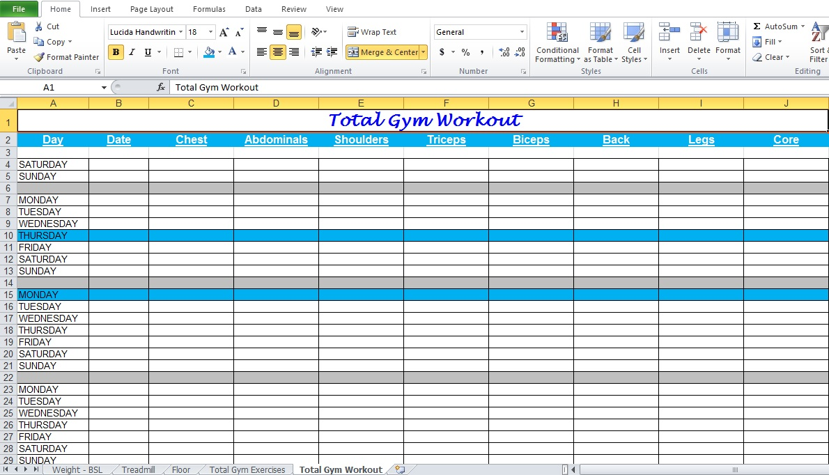 Gym Workout Plan Spreadsheet