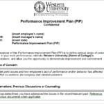 Performance Improvement Plan Sample Template
