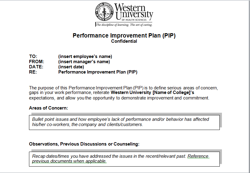 Performance Improvement Plan Sample Template Excel Tmp – Performance Improvement Plan Format