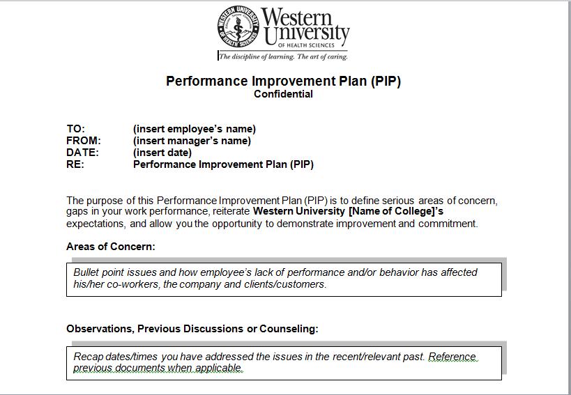 Performance Improvement Plan Template  Performance Improvement Template