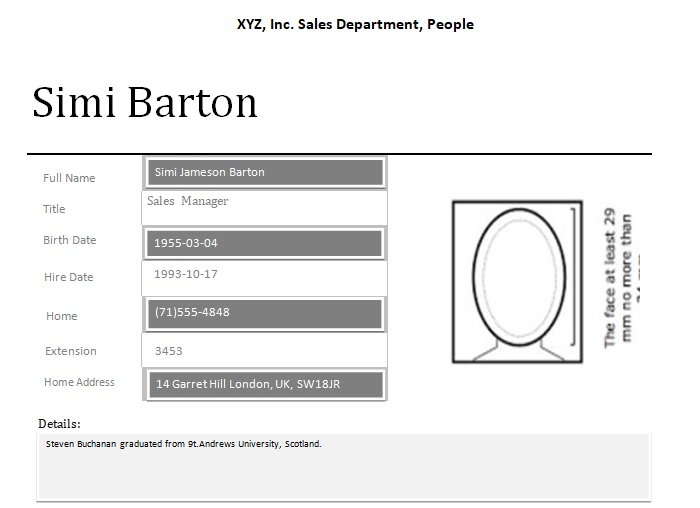 Employee Profile Template Word