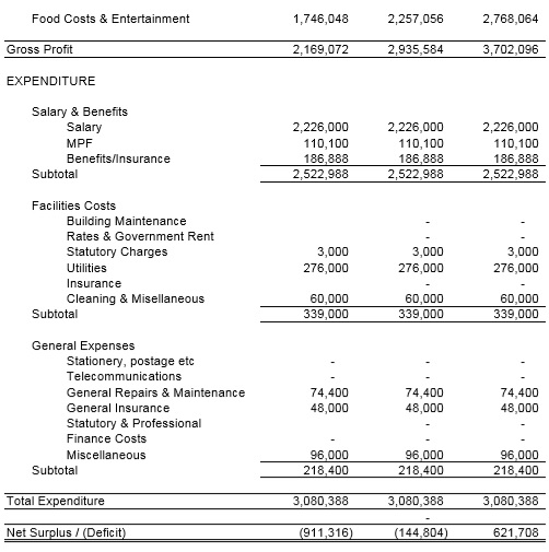 projected income and expenditure statement template