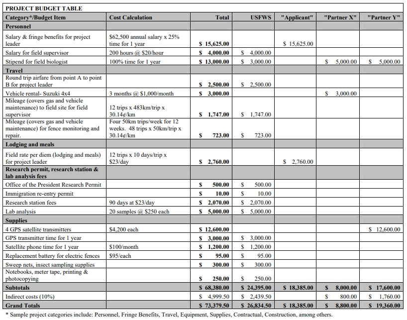 IT project budget template