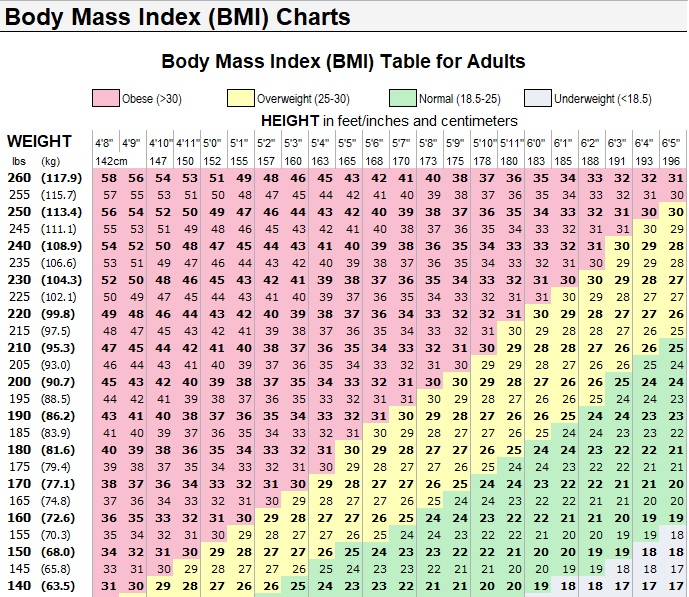 body mass index (BMI) charts template