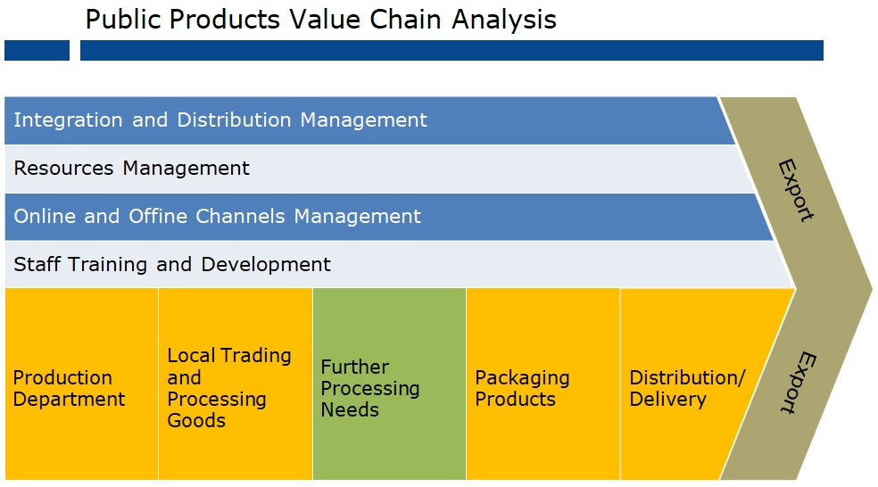 public products value chain analysis template